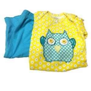 Pastel Owls Set